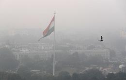 Học sinh ở thủ đô New Delhi, Ấn Độ nghỉ học 1 tuần vì khói bụi