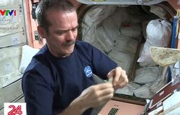 Các phi hành gia ăn gì ngoài vũ trụ?