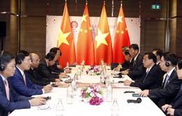 """""""Việt Nam luôn coi trọng và mong muốn thúc đẩy quan hệ hữu nghị với Trung Quốc"""""""