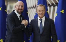 Thủ tướng Bỉ Charles Michel chính thức trở thành Chủ tịch Hội đồng châu Âu