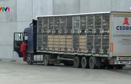 Ba Lan đẩy mạnh xuất khẩu thịt gà
