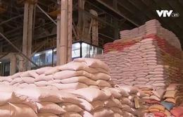 Hong Kong (Trung Quốc) cần gì ở gạo Việt Nam?