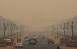 Không khí ô nhiễm mức kỷ lục, học sinh New Delhi được nghỉ học