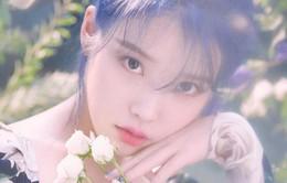 IU phát ngôn chính thức về vụ khán giả bị đuổi khỏi show mở màn tour Love Poem