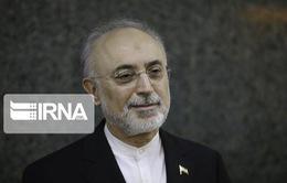 Phản ứng của EU sau khi Iran tuyên bố khởi động các máy ly tâm tiên tiến