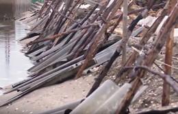 Thiệt hại ở vùng nuôi thủy sản Phú Yên sau bão số 5