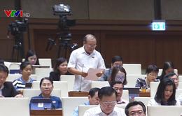 Đa số đại biểu tán thành việc ban hành nghị quyết chung về công tác tư pháp