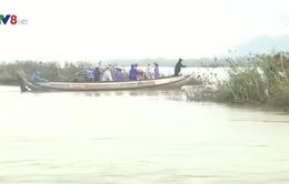 Quảng Ngãi: Bất chấp hiểm nguy để qua sông