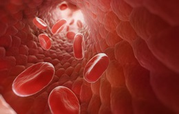 Israel thử nghiệm thành công thuốc điều trị nhiễm trùng huyết cấp