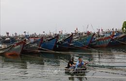 Thừa Thiên - Huế cấm tàu, thuyền ra khơi từ ngày 8/11