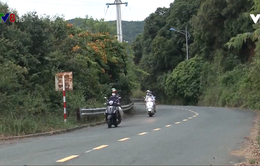 Đà Nẵng: Cấp thẻ cho người tham quan bán đảo Sơn Trà