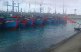Tàu cá ở Trường Sa vào nơi tránh trú an toàn