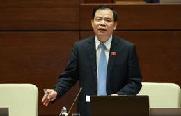 Bộ trưởng Bộ NN&PTNT trả lời sâu sát nhiều chất vấn của đại biểu Quốc hội
