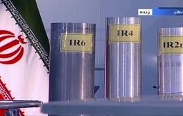 Iran chính thức nối lại việc làm giàu urani