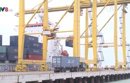 Cảng Đà Nẵng nâng cao năng lực bốc dỡ hàng hóa