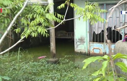 Trớ trêu khu dân cư vượt lũ thường xuyên ngập nước