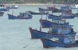 UBND tỉnh Phú Yên họp ứng phó bão số 6