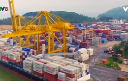 Đà Nẵng: Hội thảo quy hoạch cảng biển