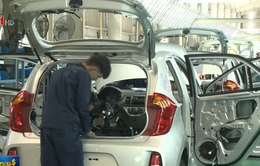 Tỷ lệ nội địa hóa thấp kéo giảm cạnh tranh ô tô Việt
