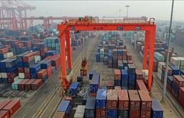 Kim ngạch thương mại của Trung Quốc với Mỹ giảm trong tháng 10