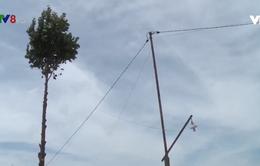 Đắk Nông - Nguy cơ mất an toàn lưới điện nông thôn mùa mưa bão