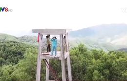 Quảng Trị: Người làm nhiệm vụ bảo vệ rừng bị hành hung