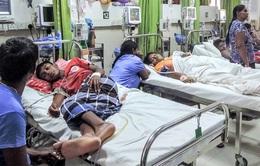 Sri Lanka cảnh báo dịch sốt xuất huyết bùng phát