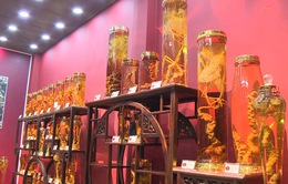 Việt Nam có bảo tàng sâm Ngọc Linh đầu tiên
