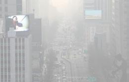 Seoul ban hành mức phạt đối với các phương tiện có lượng khí thải lớn