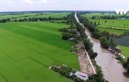 """Biến """"nguy"""" thành """"cơ"""", ngành nông nghiệp thu về 41,2 tỷ USD"""