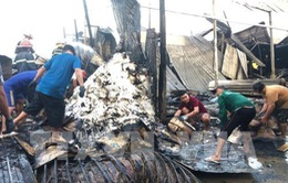 Cháy 12 căn nhà, 1 người tử vong tại Cà Mau
