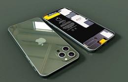 """iPhone 12 Pro Max bị phàn nàn vì không """"đội... sạc chung"""" với các thiết bị khác"""