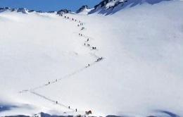 Du lịch Nam Cực sẽ không còn xa xôi