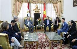 Tăng cường hợp tác Việt Nam - Ai Cập