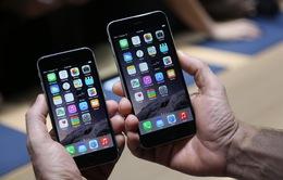 Người dùng iPhone 6 và iPhone 5S cần phải biết điều này