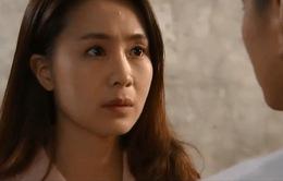 Hoa hồng trên ngực trái - Tập 38: Có chuyện gì xảy ra đi chăng nữa, Khuê sẽ không bao giờ quay lại với Thái