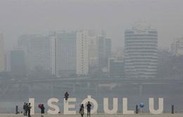 Hàn Quốc: Cảnh báo ô nhiễm bụi mịn ở mức rất tệ