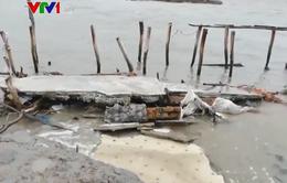Cà Mau: Trên 100 km bờ sông, bờ biển bị sạt lở ở mức nguy hiểm