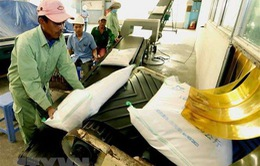 Việt Nam đứng thứ 4 tại Đông Nam Á về an ninh lương thực