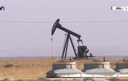 Giá dầu mỏ thế giới giảm 4%