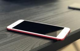 iPhone 7 cũ chỉ còn có giá 4,3 triệu đồng