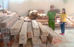 Khánh Hòa ngăn chặn hoạt động vận chuyển lâm sản trái phép