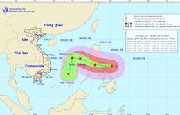 Các địa phương từ Quảng Ninh đến Cà Mau chủ động ứng phó với bão Kammuri