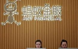 Alibaba mua cổ phần một ví điện tử Việt Nam
