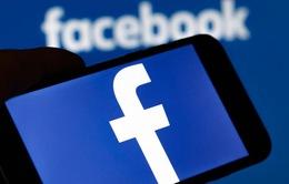 Facebook tham vọng xây dựng hệ điều hành của riêng mình