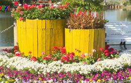Đà Lạt hấp dẫn du khách mùa lễ hội hoa