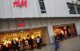 H&M thử nghiệm dịch vụ cho thuê quần áo để bảo vệ môi trường