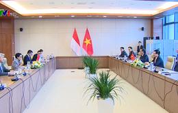 Thúc đẩy quan hệ hợp tác giữa Việt Nam - Indonesia