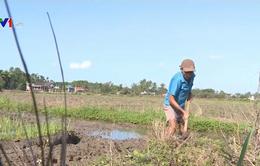 Mực nước tại các hồ ở mức thấp, việc cấp nước cho vụ Đông Xuân gặp khó