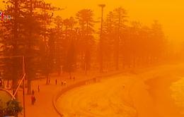 Chất lượng không khí lên mức nguy hiểm tại Sydney, Australia